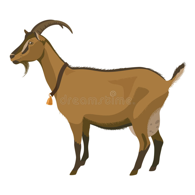 Brown goat, side view, isolated vector illustration