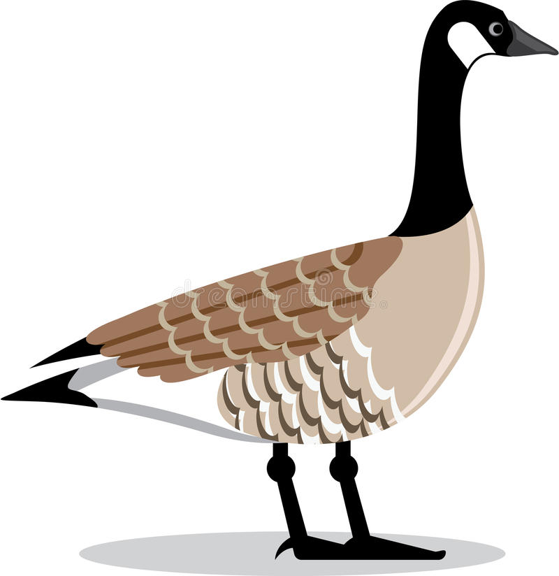 Free Brown Goose Vector Stylized Stock Images - 67347884