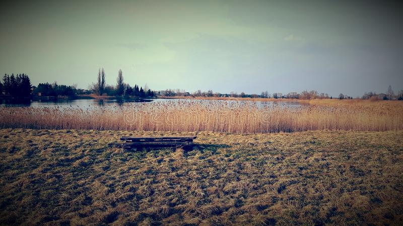 Brown Grass Field By The Lake royalty free stock images