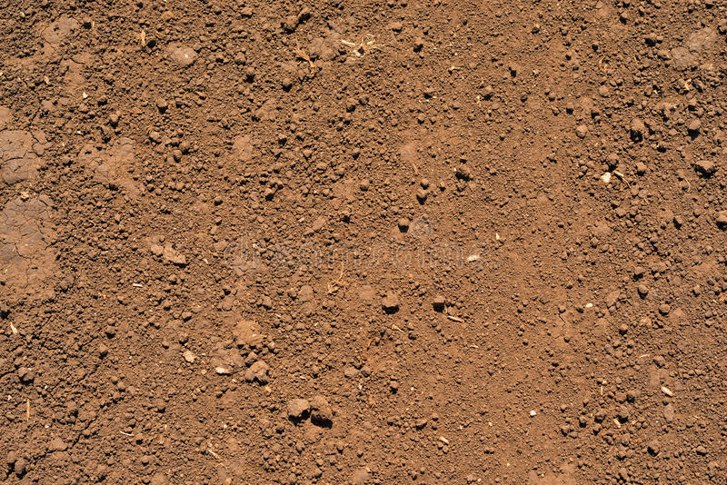 Brown ground surface. Close up natural background stock image