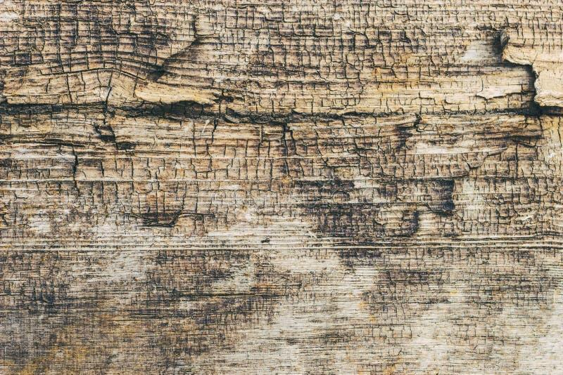 Brown grunge ściany kamienia tło lub tekstury natury skała fotografia royalty free