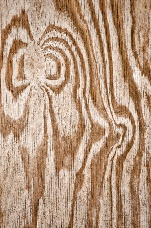 Brown Grunge Wood Pattern stock image