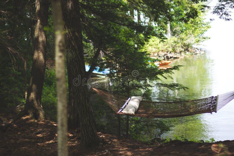 Brown-hängematte Zwischen 2 Brown-bäumen Neben Gewässer Während Der Tageszeit Kostenlose Öffentliche Domain Cc0 Bild