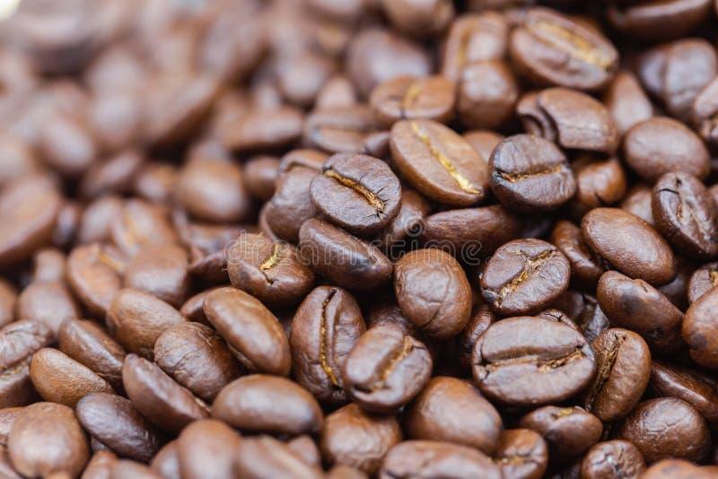 Brown ha arrostito i chicchi di caffè Primo piano sparato dei chicchi di caffè fotografie stock