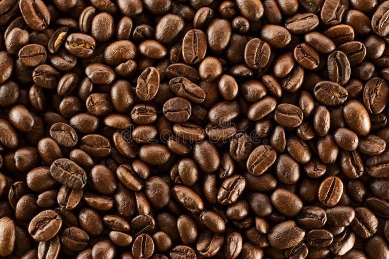 Brown ha arrostito i chicchi di caffè, seme su fondo scuro Aroma, bevanda nera della caffeina Moca di energia isolata primo piano immagini stock libere da diritti