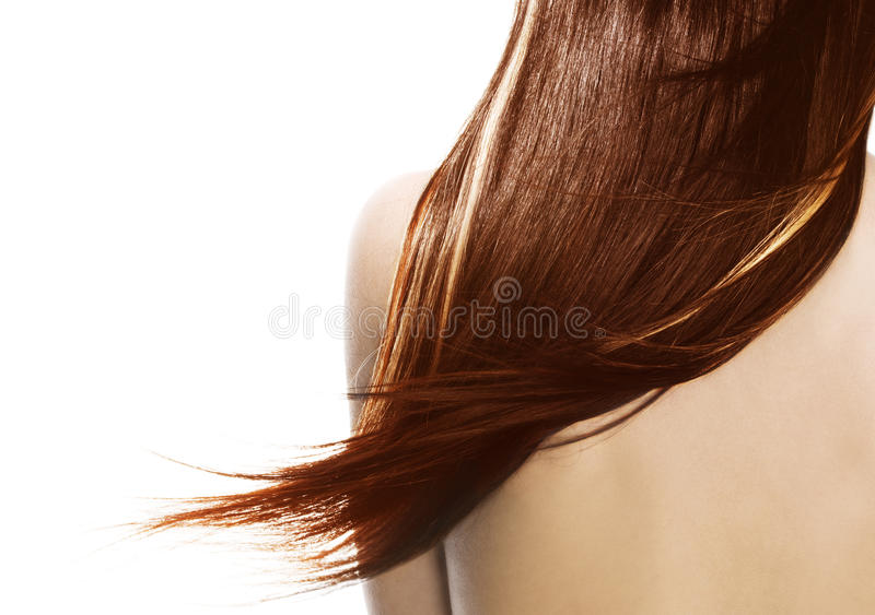 Brown hair royalty free stock photo