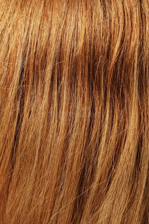 Brown hair. Detailed closeup of human brown hair stock photo