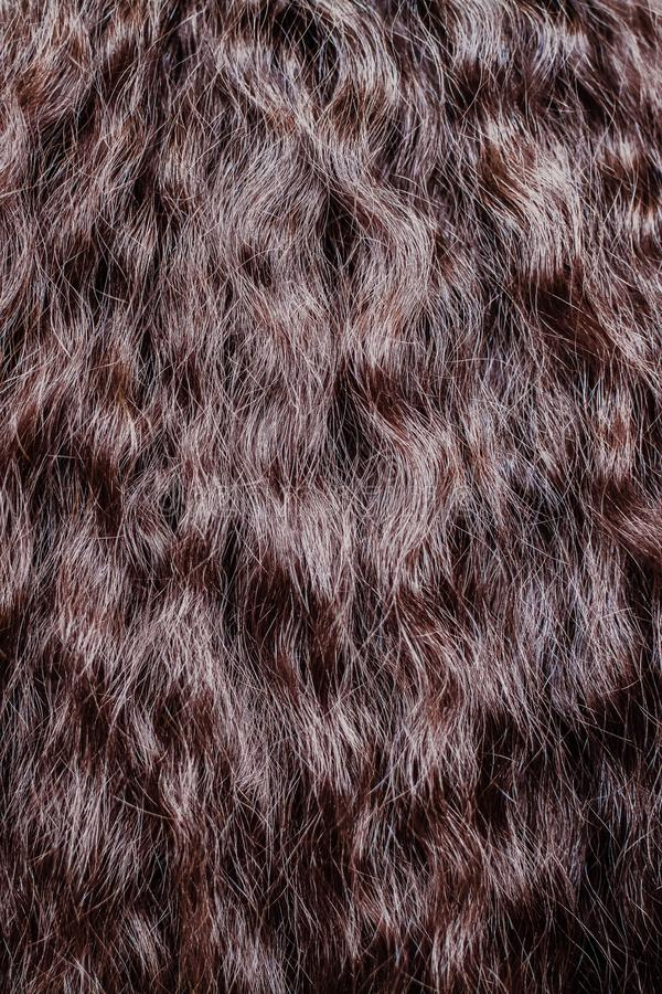 Brown hair close up. Textures and background stock photos