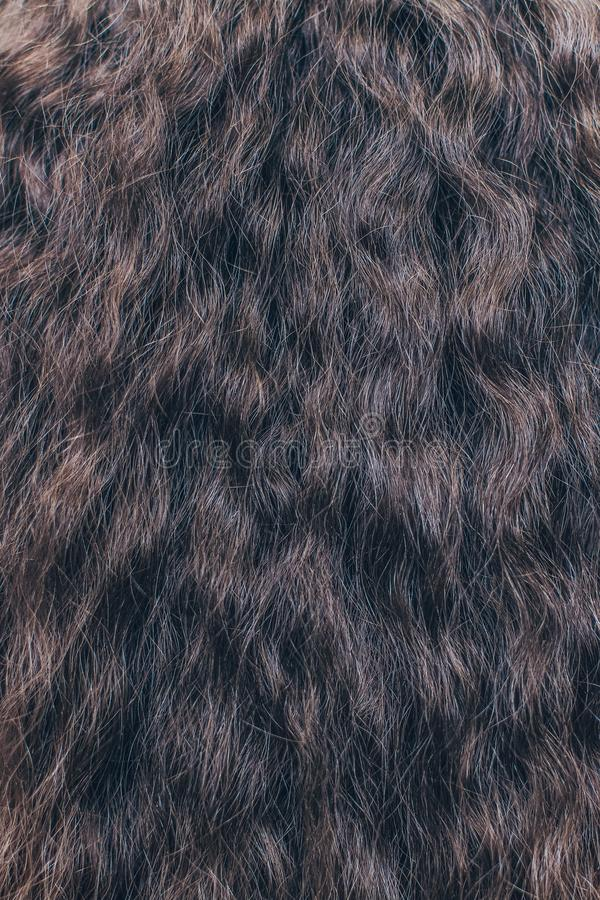 Brown hair close up. Textures and background royalty free stock photo