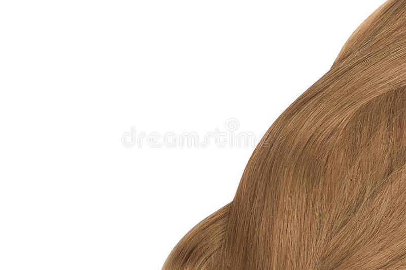 Brown hair, isolated on white background. Copy space. Natural healthy hair isolated on white background. Detailed clipart for your collages and illustrations stock images