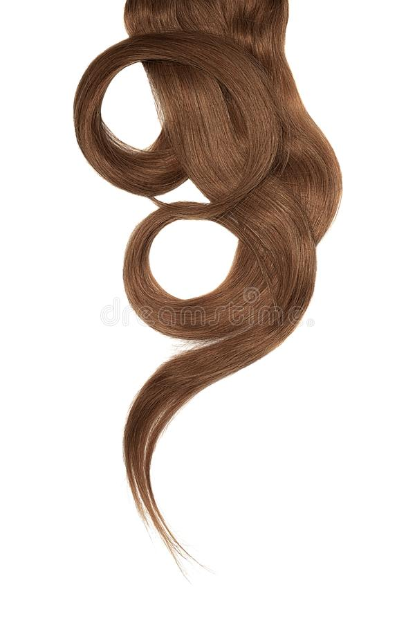 Brown hair isolated on white background. Long beautiful ponytail in shape of circle. Natural healthy hair isolated on white background. Detailed clipart for your royalty free stock photos