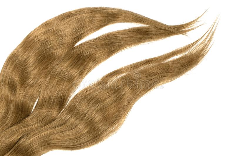 Brown hair isolated on white background. Long disheveled ponytail. Natural healthy hair isolated on white background. Detailed clipart for your collages and stock image