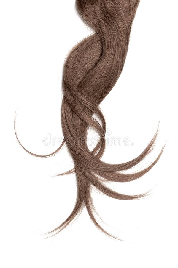 Brown hair, isolated on white background. Long and disheveled ponytail. Natural healthy hair isolated on white background. Detailed clipart for your collages and royalty free stock image