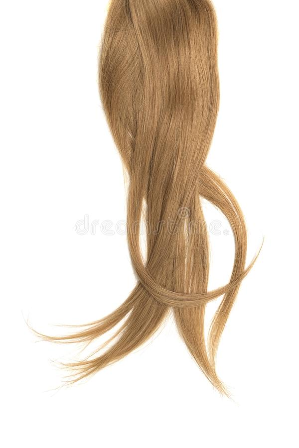 Brown hair, isolated on white background. Long ponytail. Natural healthy hair isolated on white background. Detailed clipart for your collages and illustrations stock photo