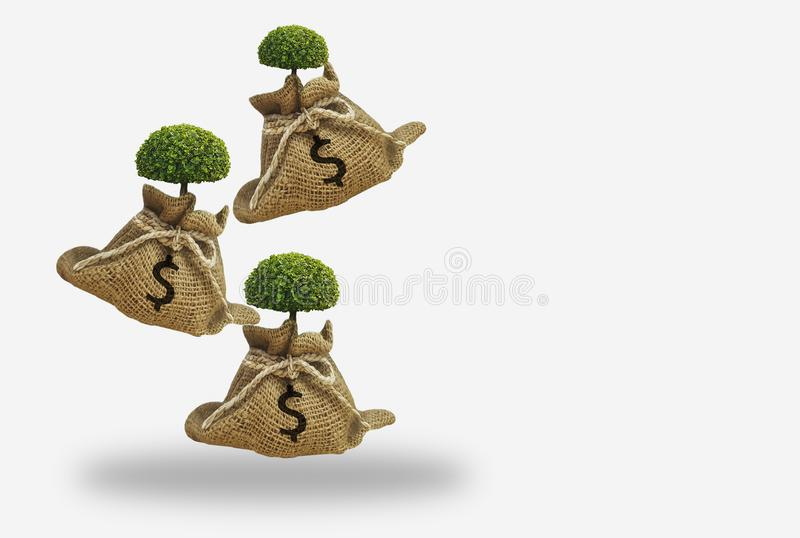Brown hemp bag with dollar sign,growing tree with dropping from top,white background,concept of saving money,investment and stock photo
