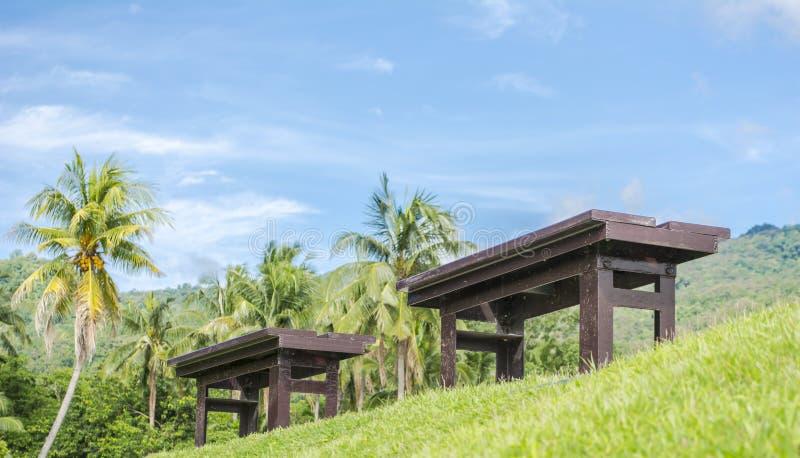 Brown-Holzbank an einem grünen See lizenzfreie stockfotografie