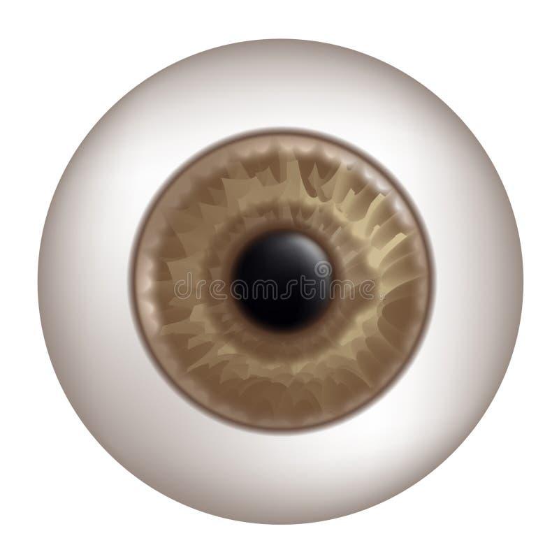 Brown human eye. Creative design of brown human eye stock illustration