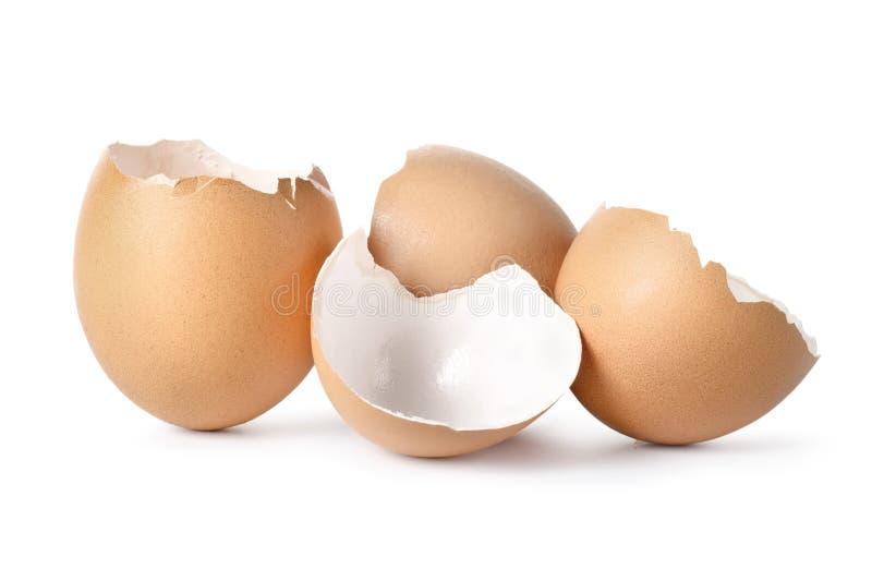 Brown jajka zdjęcie royalty free