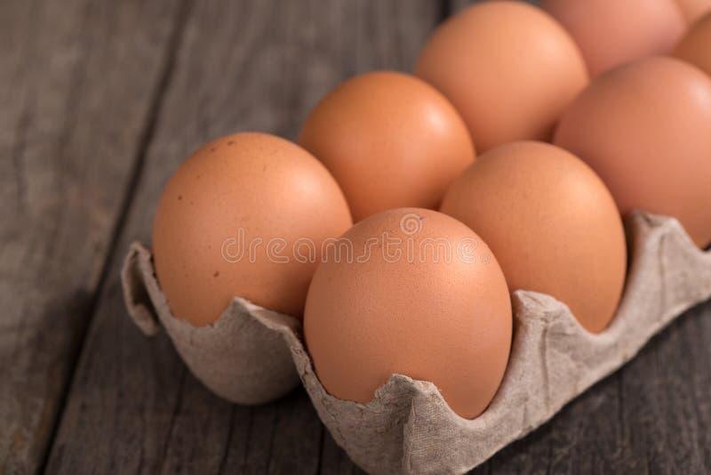 Brown jajka w kartonie obrazy royalty free
