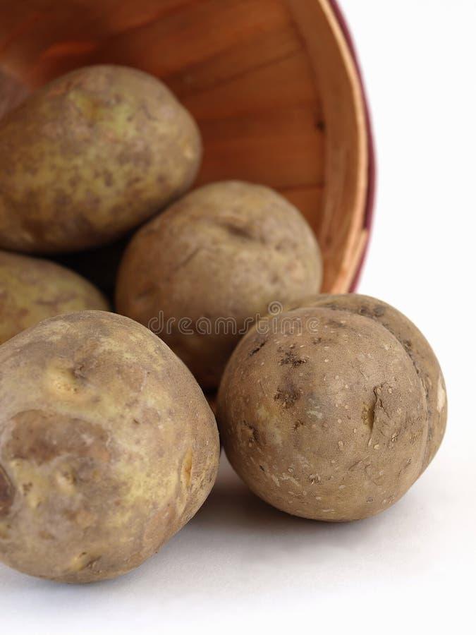 Brown-Kartoffeln stockbild