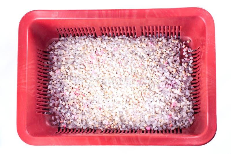 Brown klingerytu głęboka kocia taca z sylikatowego gel napełniaczem z bielu i menchii granulami na białym tle, odizolowywa obrazy royalty free