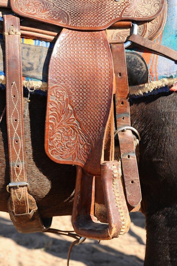 Brown koń Siodła fotografia royalty free
