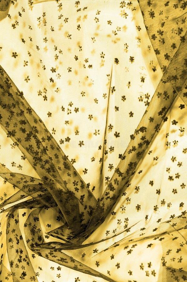 brown koronka na białym tle Przedstawia odkrywczość koronka m zdjęcia stock