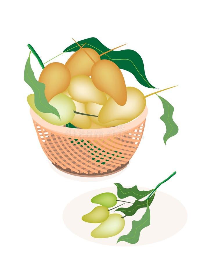 Brown kosz Słodkie Mangowe owoc ilustracja wektor
