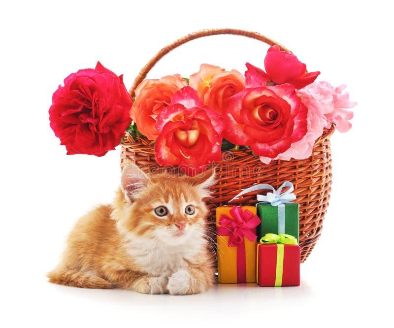 Brown kosz z różami i figlarka zdjęcia royalty free