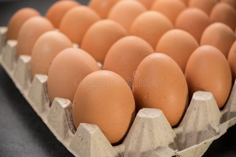 Brown kurczaka bezpłatni jajka obrazy stock