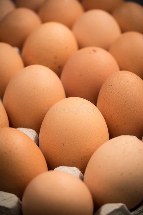 Brown kurczaka bezpłatni jajka obraz stock