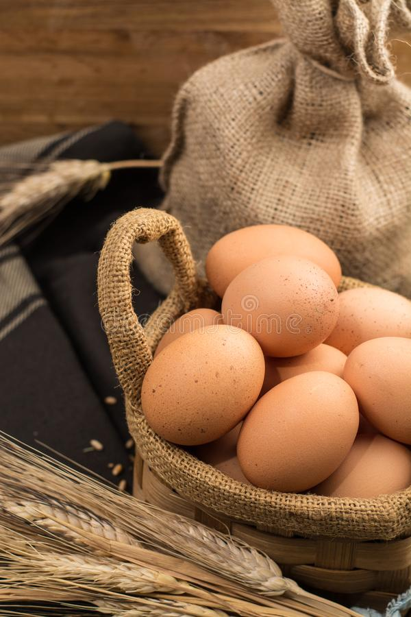 Brown kurczaka bezpłatni jajka obraz royalty free