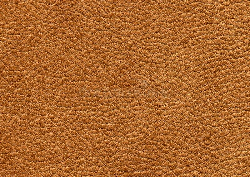 Brown läder arkivfoton