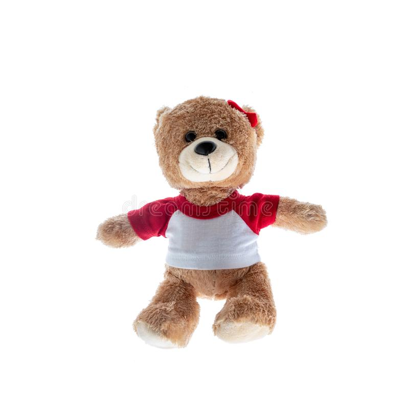 Brown Lady teddy bear isolated on white background. Mock up for card cerebration and education concept royalty free stock image