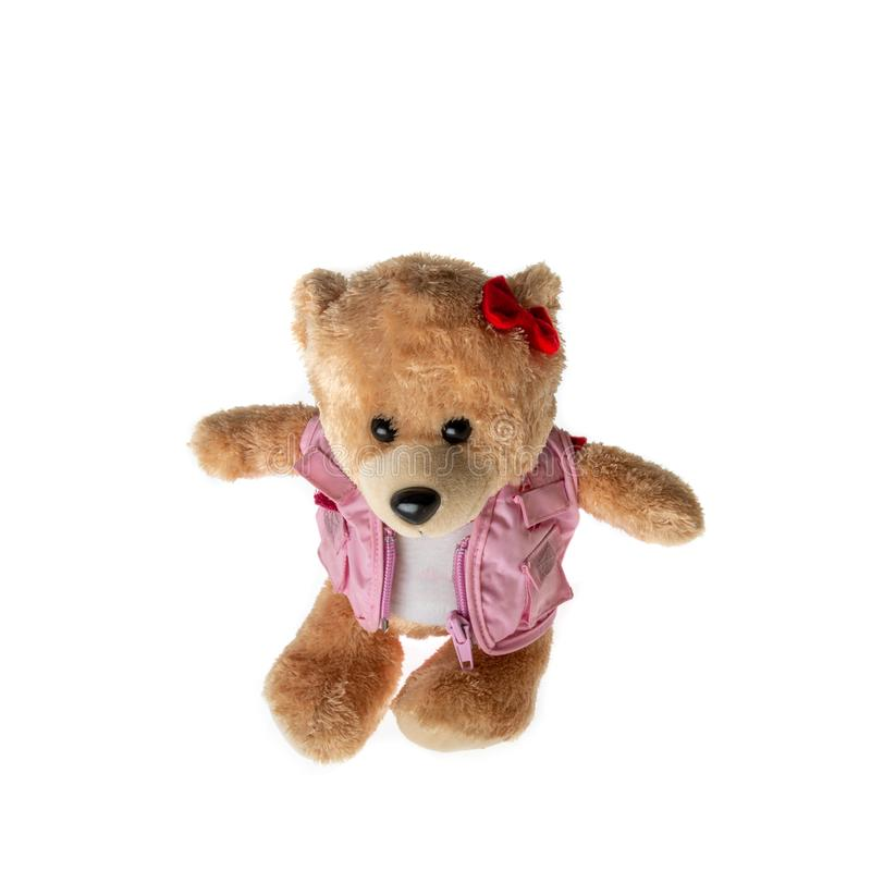 Brown Lady teddy bear isolated on white background. Mock up for card cerebration and education concept stock image
