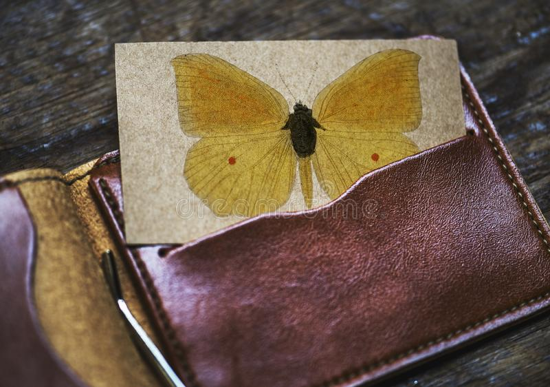 Brown Leather Card Wallet royalty free stock images