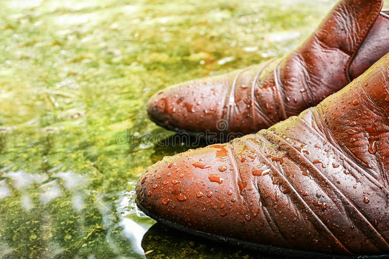 Brown Leather Shoes wet with water droplets on wet pavement rain foor ,Close up shot ,Shallow DOF. Brown Leather Shoes with water droplets on wet pavement rain stock images