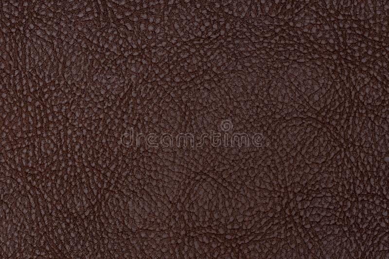 download brown leather texture abstract background empty template stock photo image of