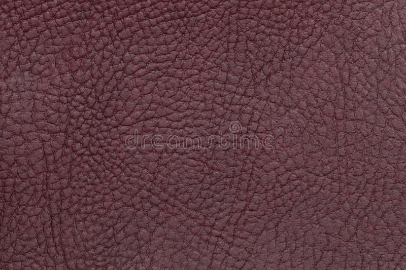 Brown leather texture background. Closeup photo. royalty free stock photography