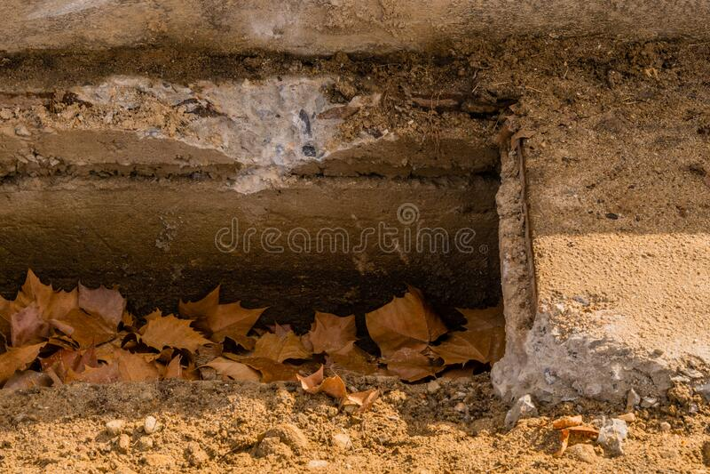 Brown leaves inside culvert stock photo