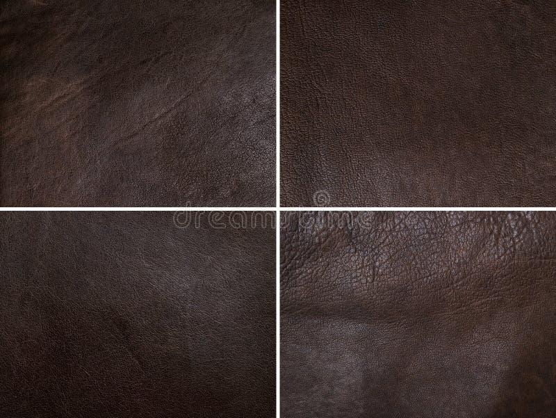 Brown-Lederset stockfotos