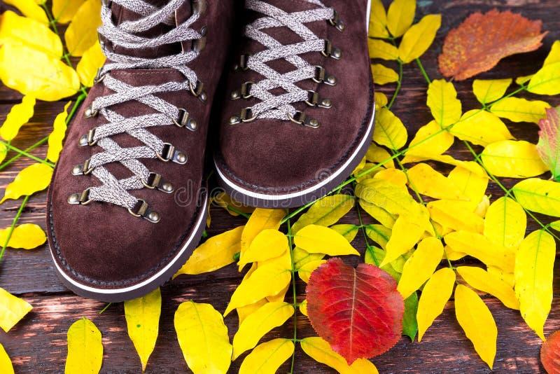 Brown mężczyzna zamszowy inicjuje na drewnianym tle z liśćmi Jesieni lub zimy buty obrazy royalty free