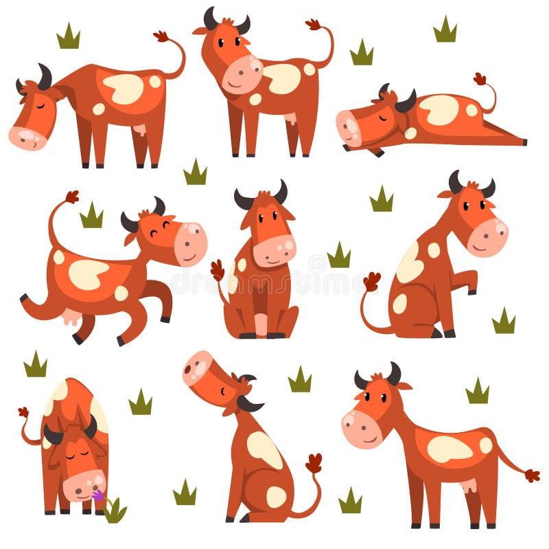 Brown manchó el sistema de la vaca, carácter del animal del campo en diversos ejemplos del vector de las actitudes en un fondo bl ilustración del vector