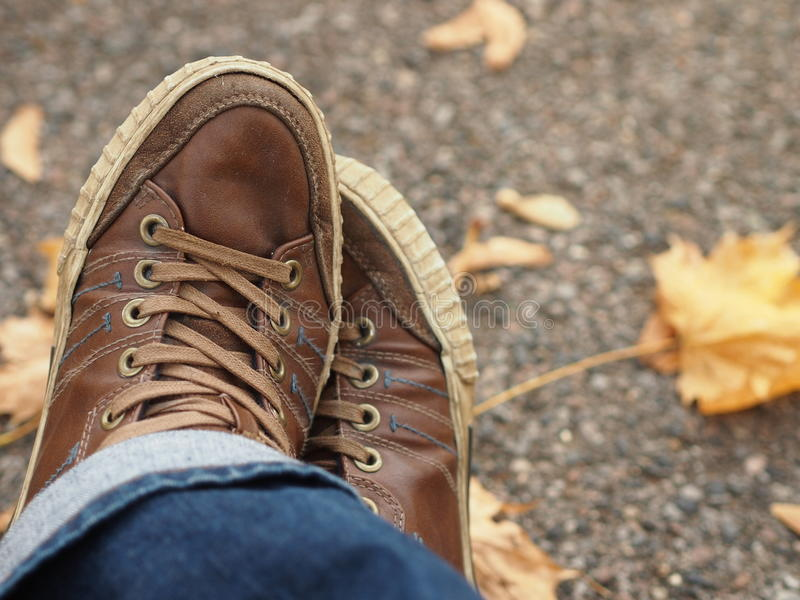 Brown men`s shoes. Close up view of brown men`s shoes royalty free stock images