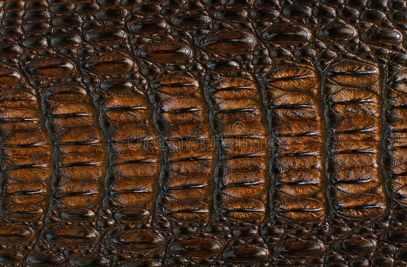 Brown, Metal, Material, Pattern royalty free stock images