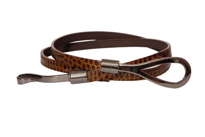 Brown modern belt stock photos