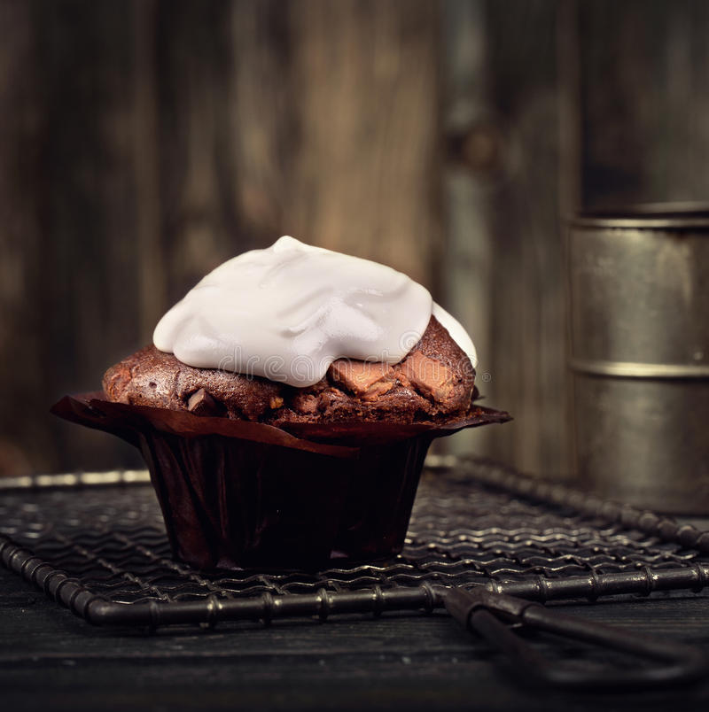 Brown muffin stock photography