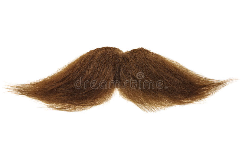 Brown mustache isolated on white royalty free stock images