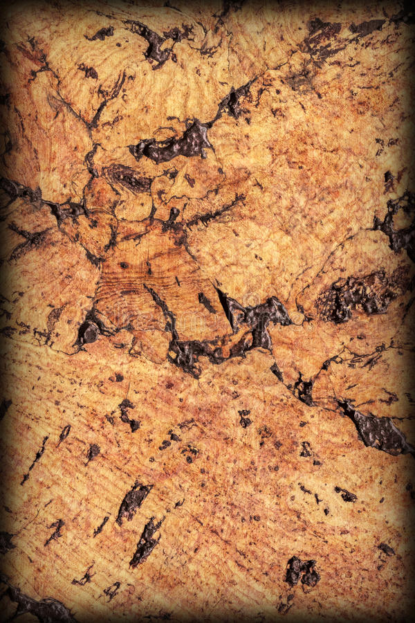 Brown naturale Cork Tile Vignetted Grunge Texture fotografia stock