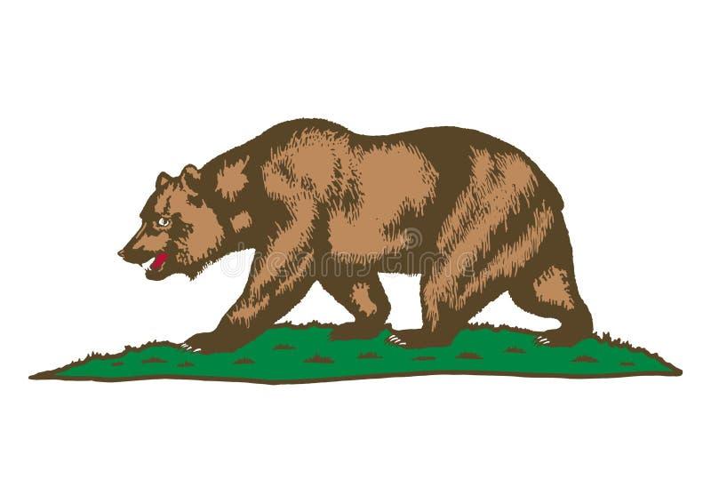 Brown niedźwiedź na trawie ilustracja wektor